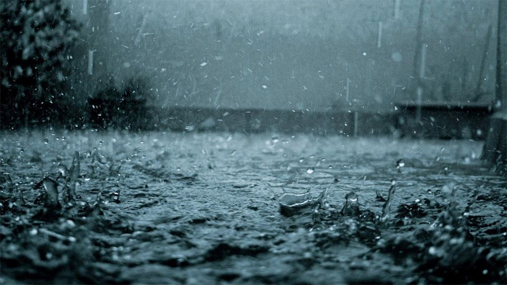 Về cùng cơn mưa